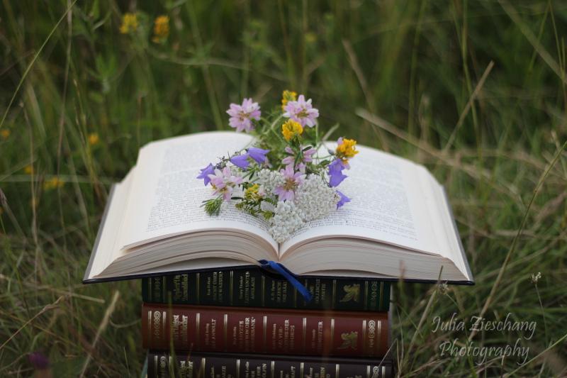 Aufgeschlagenes Buch mit Wiesenblumen
